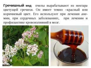 Гречишный мед пчелы вырабатывают из нектара цветущей гречихи. Он имеет темно