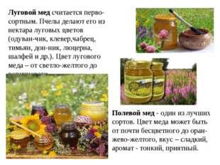 Луговой мед считается перво-сортным. Пчелы делают его из нектара луговых цвет