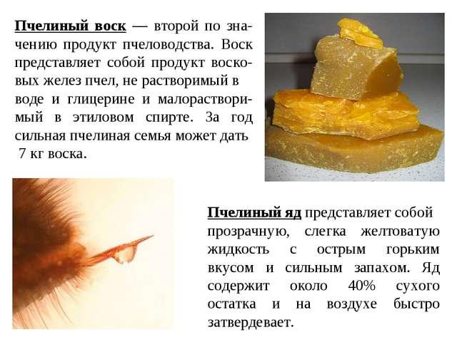 Пчелиный воск — второй по зна-чению продукт пчеловодства. Воск представляет с...