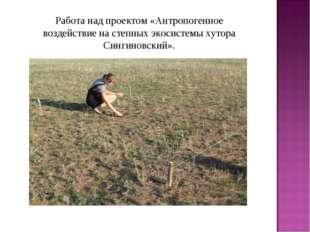 Работа над проектом «Антропогенное воздействие на степных экосистемы хутора С