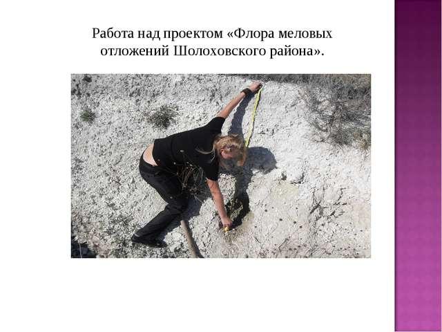 Работа над проектом «Флора меловых отложений Шолоховского района».