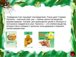 Разведение пчел называют пчеловодством. Пчелы дают Справка. Прополис - пчели