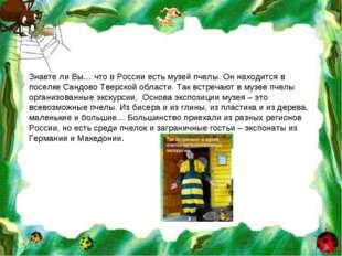 Знаете ли Вы… что в России есть музей пчелы. Он находится в поселке Сандово Т