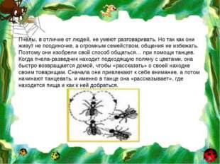 Пчёлы, в отличие от людей, не умеют разговаривать. Но так как они живут не по