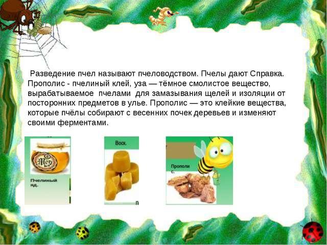 Разведение пчел называют пчеловодством. Пчелы дают Справка. Прополис - пчели...