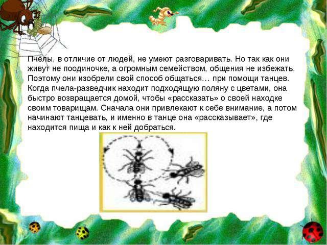 Пчёлы, в отличие от людей, не умеют разговаривать. Но так как они живут не по...