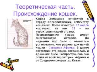 Теоретическая часть. Происхождение кошек. Кошка домашняя относится к отряду м