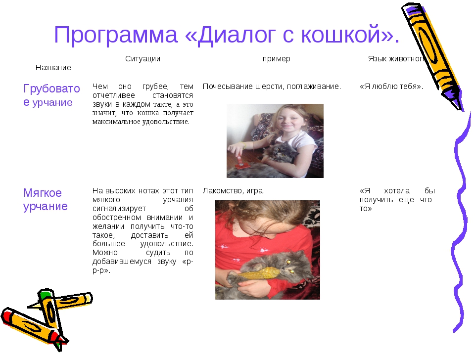 Программа «Диалог с кошкой». НазваниеСитуациипримерЯзык животного Грубоват...