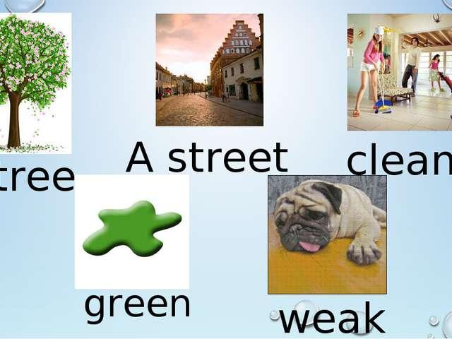 A tree green A street clean weak