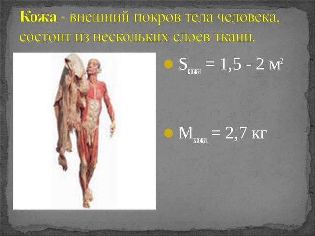 Sкожи= 1,5 - 2 м2 Mкожи= 2,7 кг