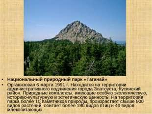 Национальный природный парк «Таганай» Организован 6 марта 1991 г. Находится н