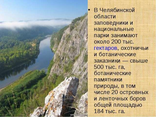 В Челябинской области заповедники и национальные парки занимают около 200 тыс...