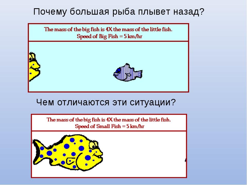 Почему большая рыба плывет назад? Чем отличаются эти ситуации?