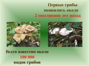 Первые грибы появились около 2 миллионов лет назад Всего известно около 100