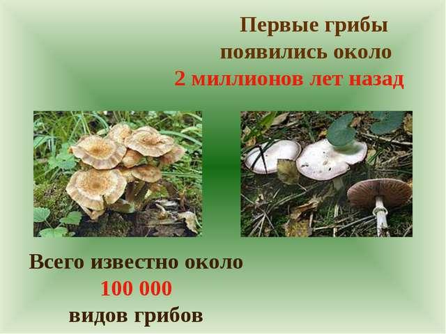 Первые грибы появились около 2 миллионов лет назад Всего известно около 100...