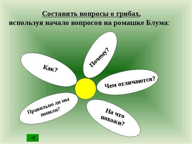 Составить вопросы о грибах, используя начало вопросов на ромашке Блума: