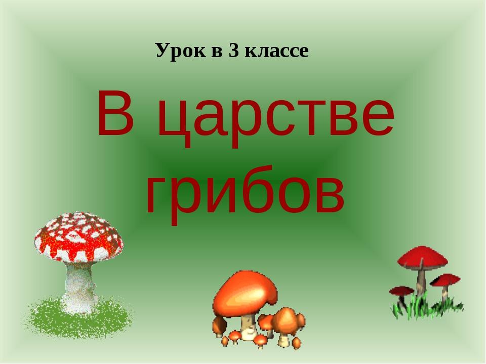 В царстве грибов Урок в 3 классе
