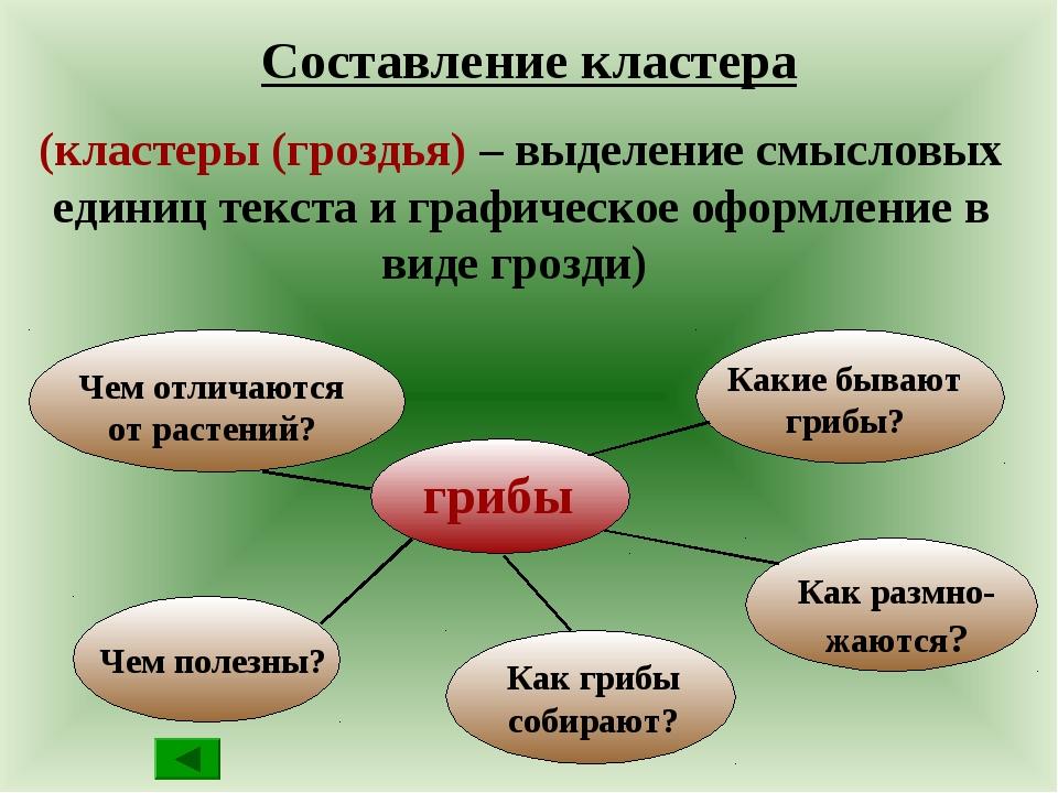 Составление кластера (кластеры (гроздья) – выделение смысловых единиц текста...