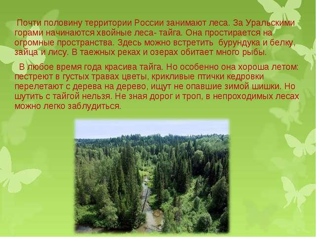 Почти половину территории России занимают леса. За Уральскими горами начинаю...