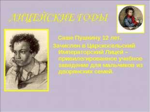 Саше Пушкину 12 лет. Зачислен в Царскосельский Императорский Лицей – привиле