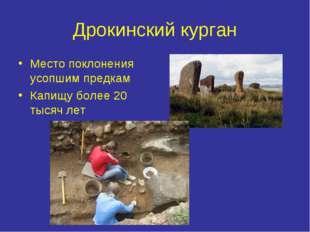 Дрокинский курган Место поклонения усопшим предкам Капищу более 20 тысяч лет