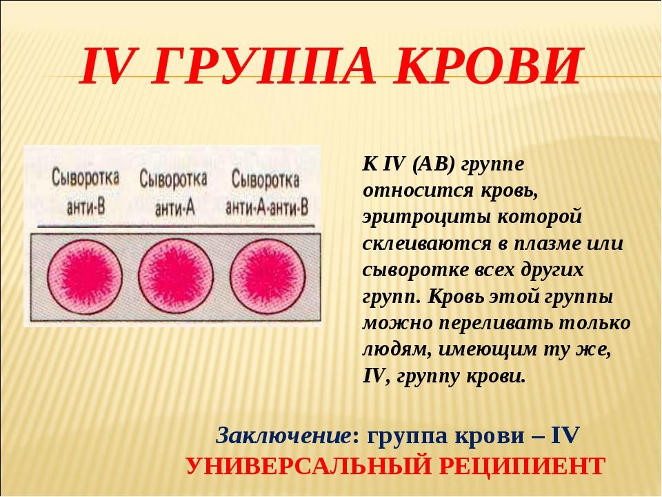 IV ГРУППА КРОВИ К IV (АВ) группе относится кровь, эритроциты которой склеиваю...