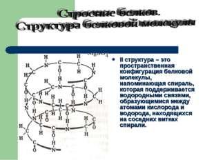II структура – это пространственная конфигурация белковой молекулы, напоминаю
