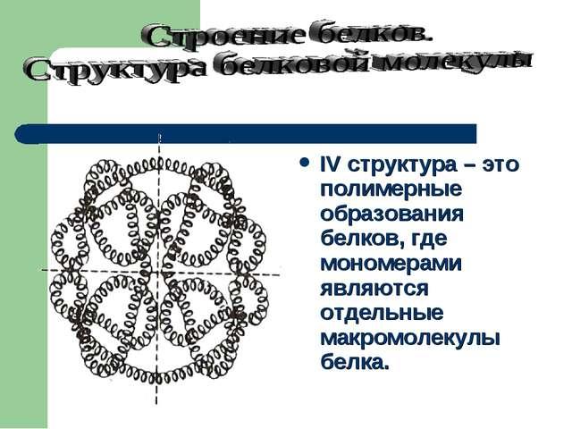 IV структура – это полимерные образования белков, где мономерами являются отд...