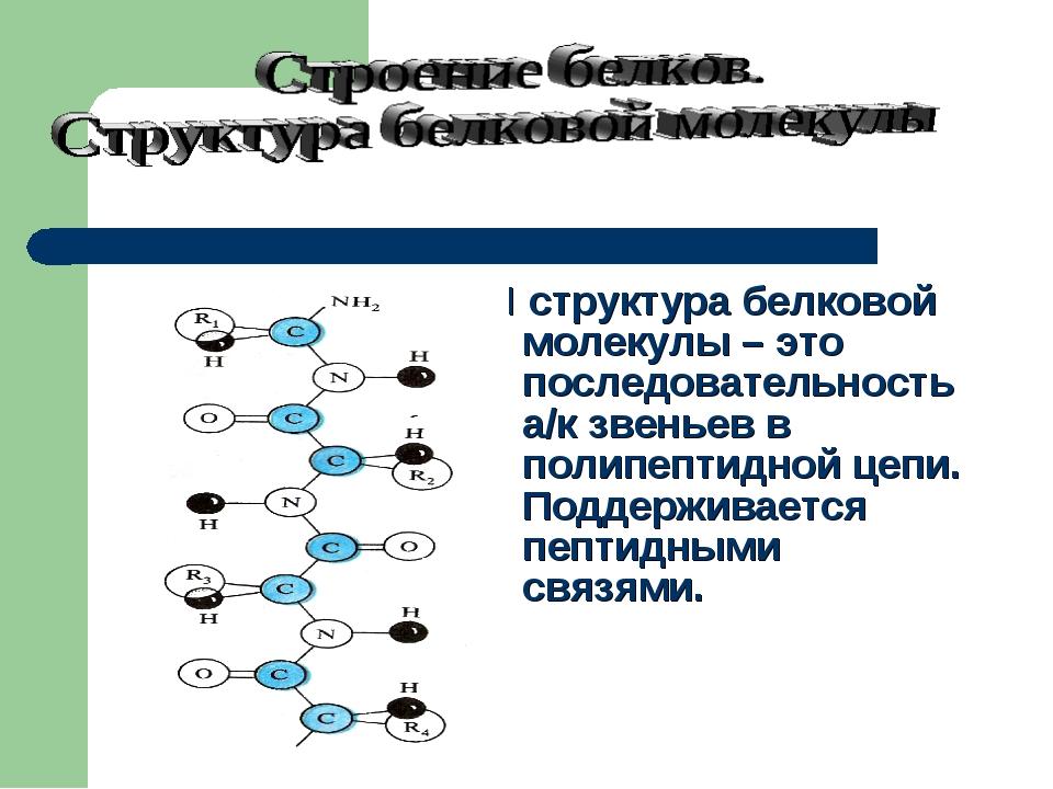 I структура белковой молекулы – это последовательность а/к звеньев в полипеп...