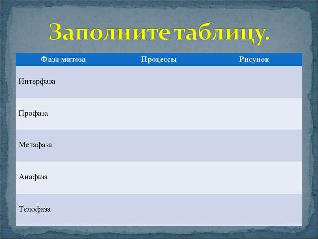 Фаза митозаПроцессыРисунок Интерфаза  Профаза  Метафаза  Анафаза  Т...