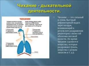 Чихание — это сильный и очень быстрый рефлекторный выдох через ноздри, возник