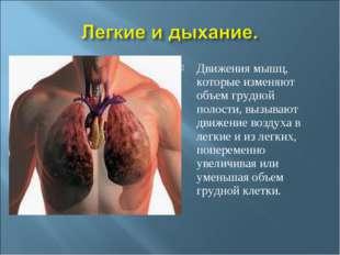 Движения мышц, которые изменяют объем грудной полости, вызывают движение возд