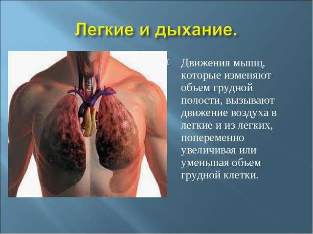 Движения мышц, которые изменяют объем грудной полости, вызывают движение возд...