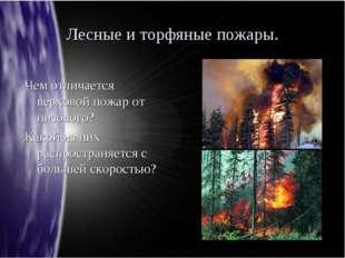 Лесные и торфяные пожары. Чем отличается верховой пожар от низового? Какой из