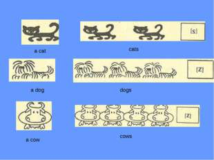 a cat a dog a cow cats dogs cows