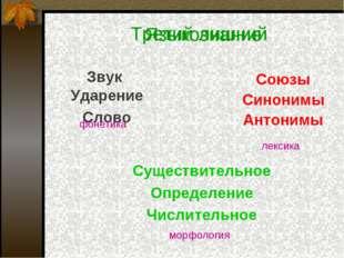 Третий лишний Звук Союзы Синонимы Антонимы Существительное Определение Числит