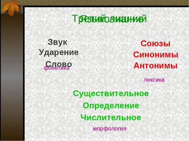 Третий лишний Звук Союзы Синонимы Антонимы Существительное Определение Числит...