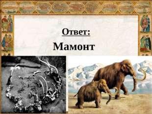 Ответ: Мамонт