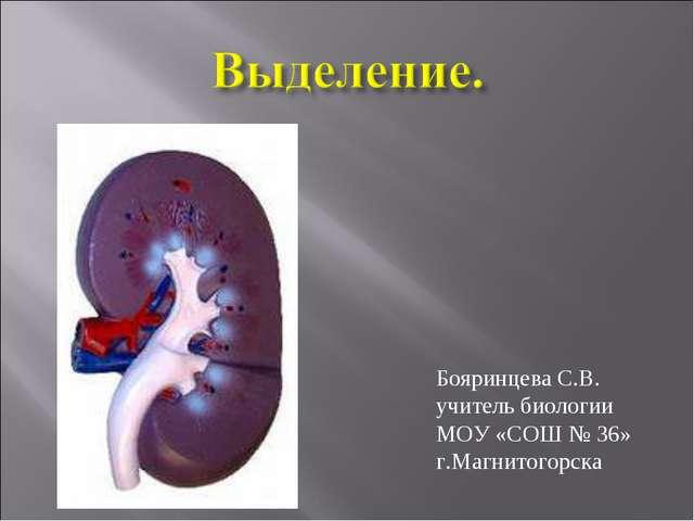 Бояринцева С.В. учитель биологии МОУ «СОШ № 36» г.Магнитогорска