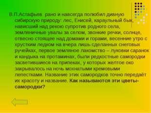В.П.Астафьев рано и навсегда полюбил дивную сибирскую природу: лес, Енисей, к
