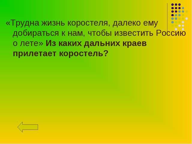 «Трудна жизнь коростеля, далеко ему добираться к нам, чтобы известить Россию...