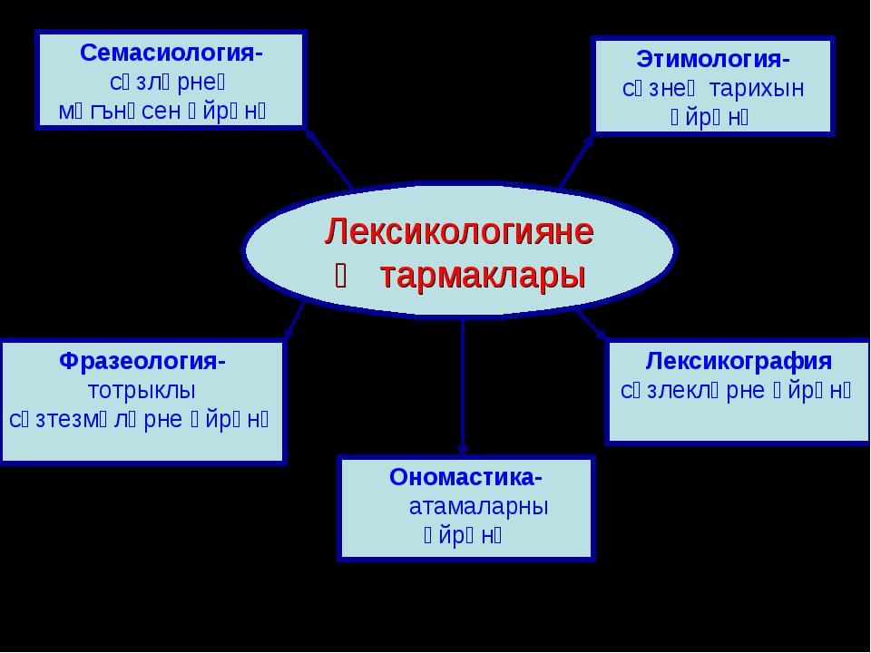 Лексикологиянең тармаклары