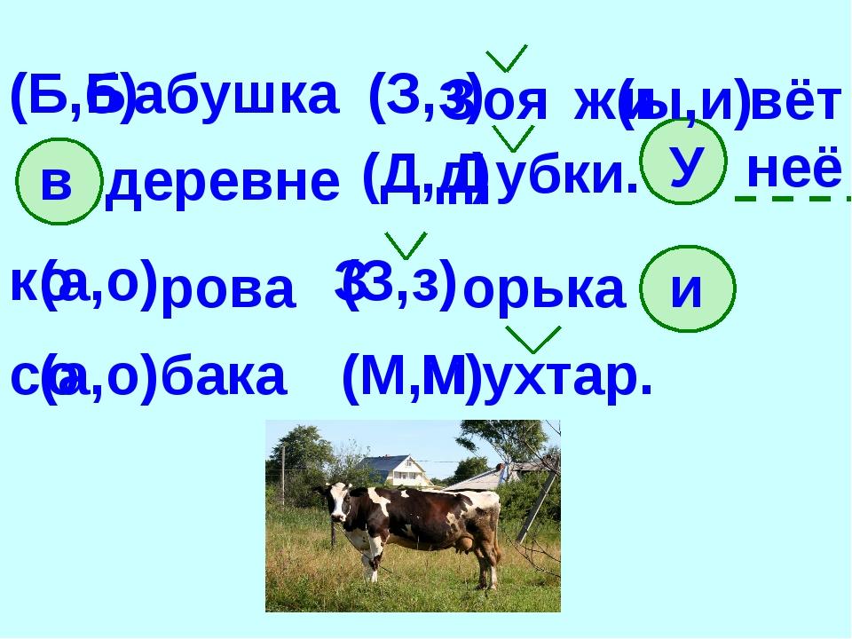 абушка (Б,б) (З,з) оя ж (ы,и) вёт в деревне (Д,д) убки. У неё к (а,о) рова (З...