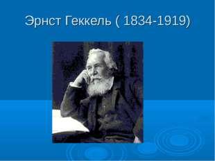 Эрнст Геккель ( 1834-1919)
