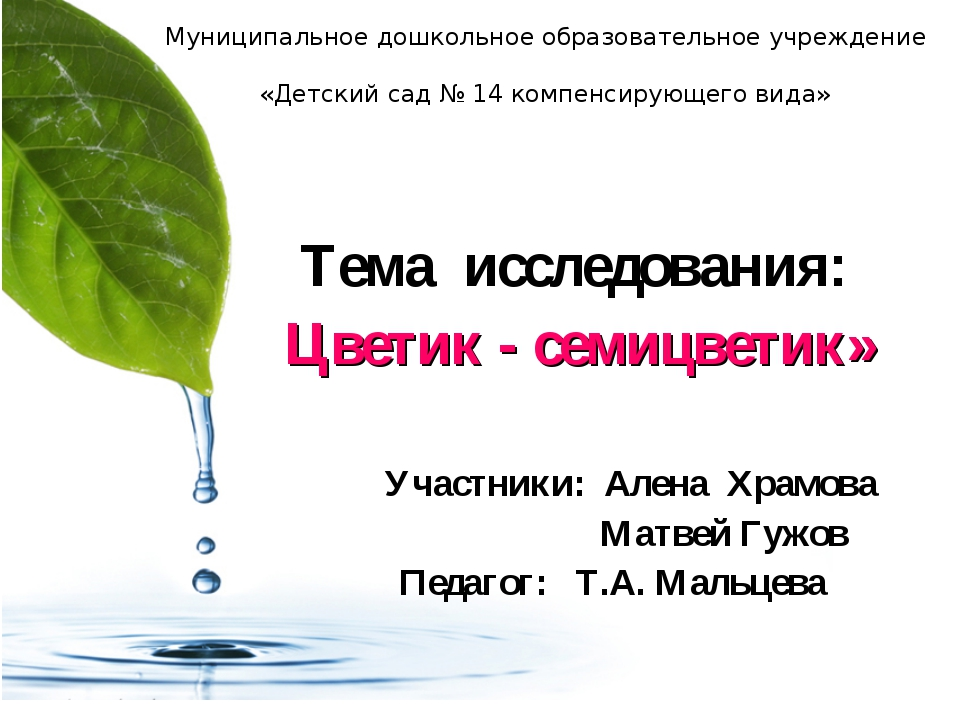 Муниципальное дошкольное образовательное учреждение «Детский сад № 14 компенс...