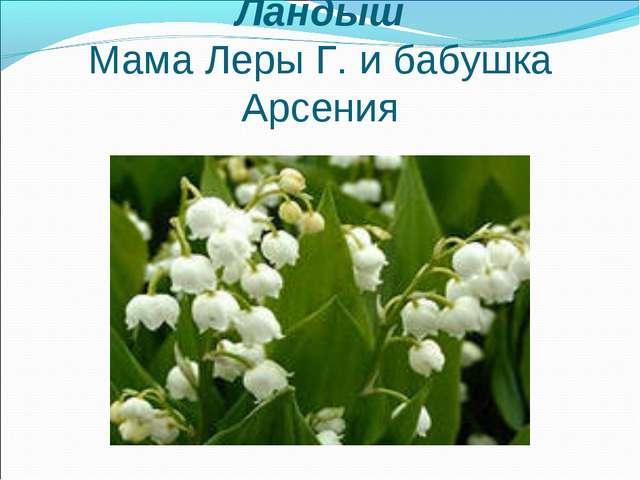 Ландыш Мама Леры Г. и бабушка Арсения