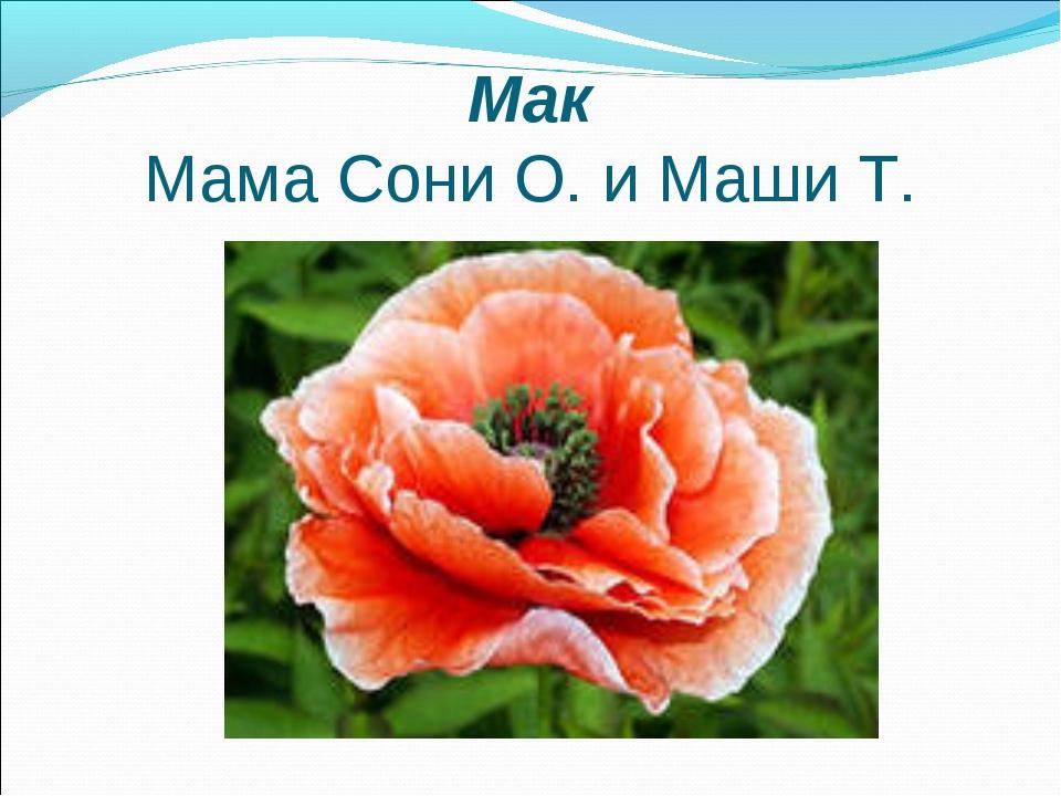 Мак Мама Сони О. и Маши Т.