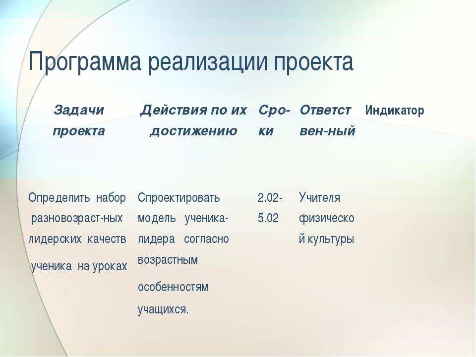 Программа реализации проекта