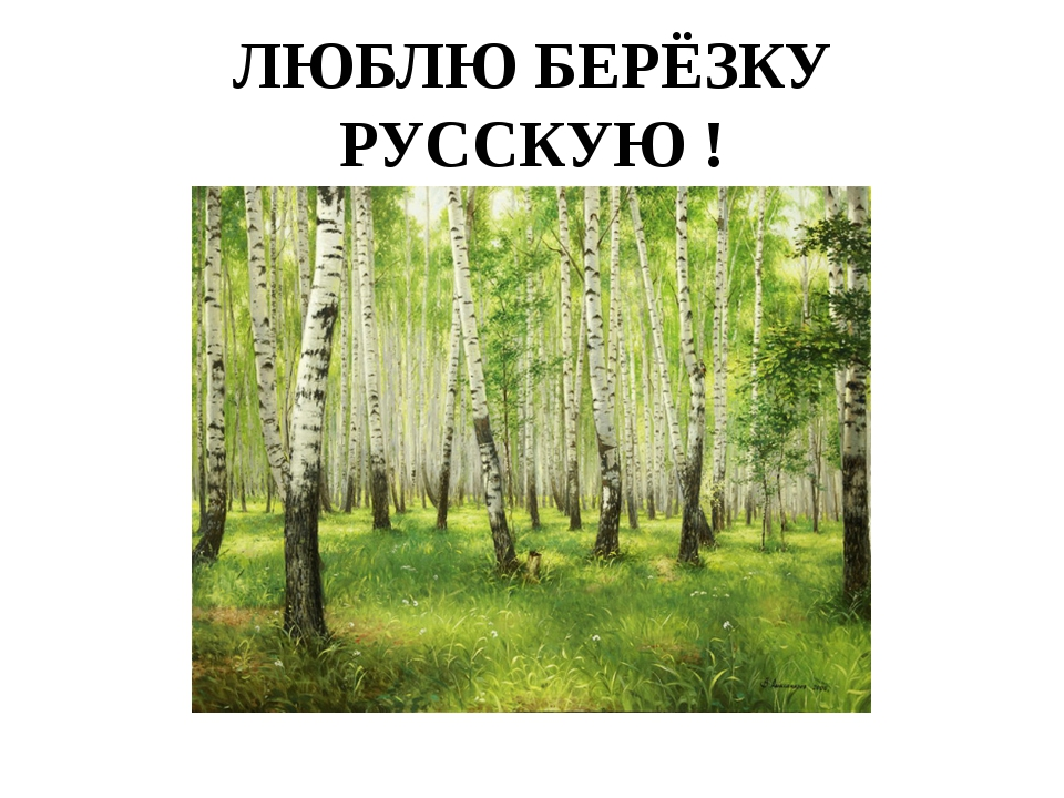 ЛЮБЛЮ БЕРЁЗКУ РУССКУЮ !