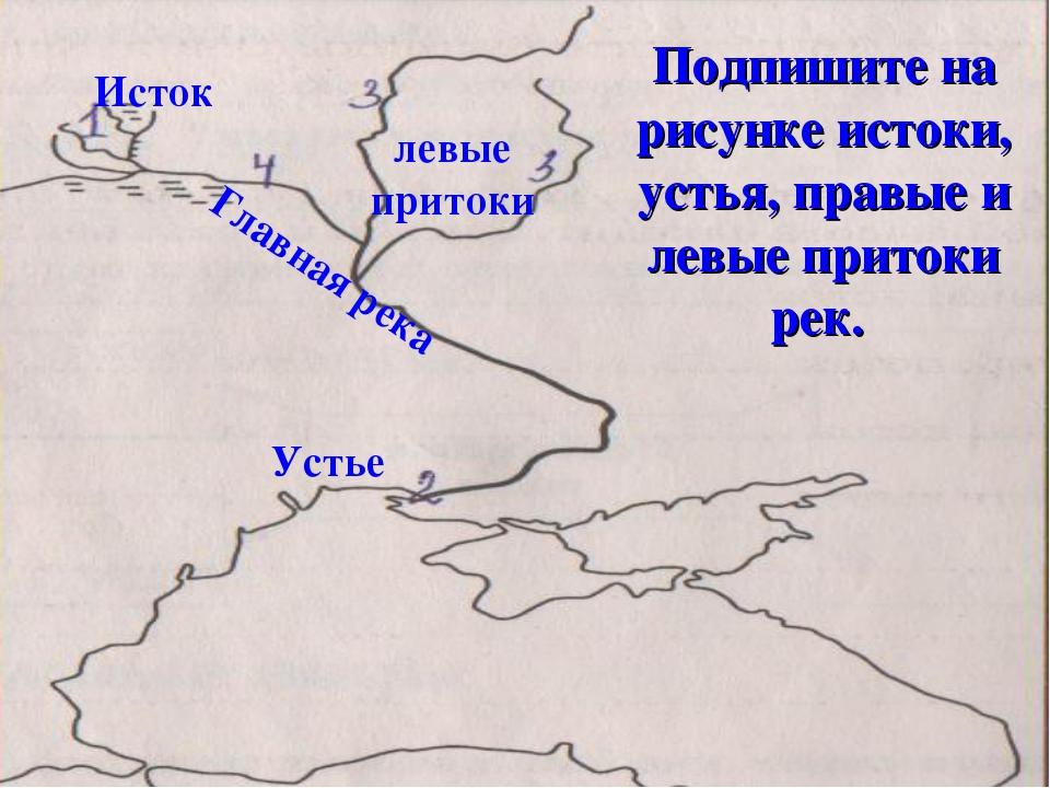 Подпишите на рисунке истоки, устья, правые и левые притоки рек. Исток Устье л...
